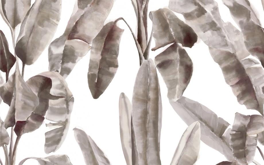 bananito-caramel-1500x937