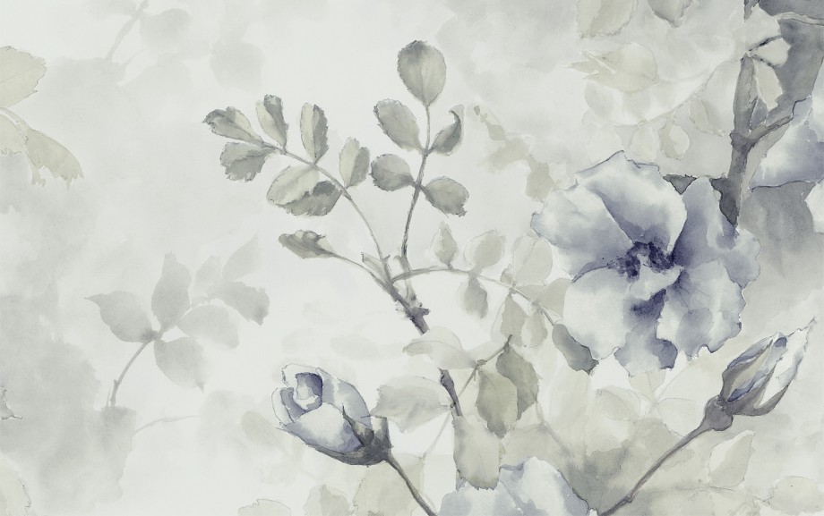 roses-aquamarina-1500x940