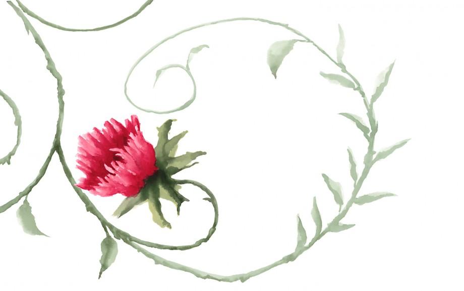 Cap-rose-1500x940
