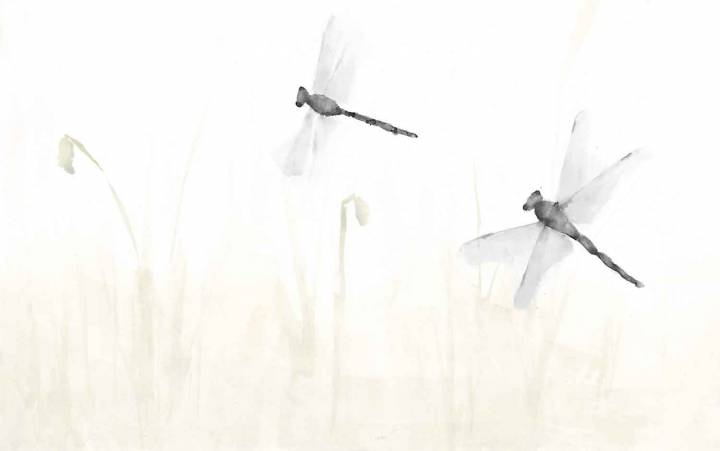 libelula - papel pintado a mano color gris