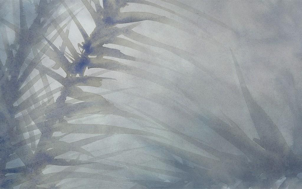 palms-blue-1500x940